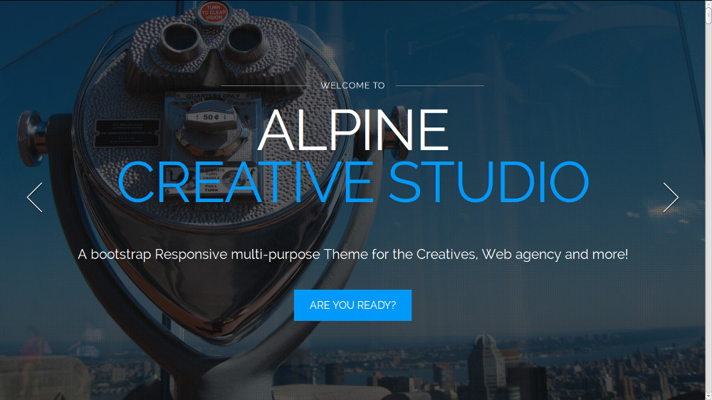 Alpine - A Responsive One Page Parallax Drupal Theme