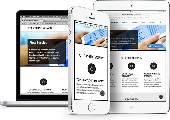 Startup Growth: A feature-rich, responsive theme with a sober, classic & yet modern character